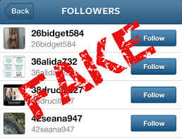 instagram fake followers